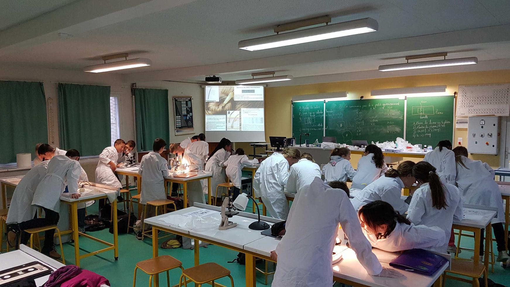 Salle de sciences.jpg