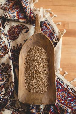 Local Wheat