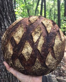 Ancient Wheat Levain