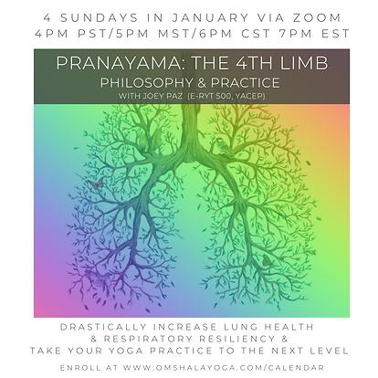 Jan Pranayama Practice Group w_Joey.png