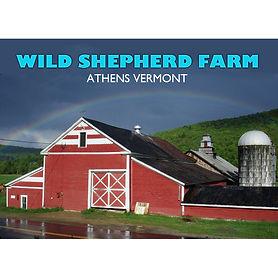 Wild Shepherd Farm