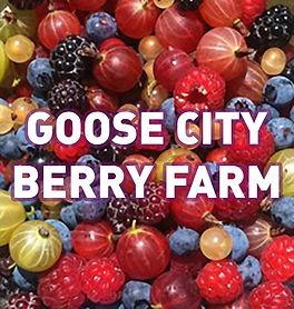 Goose City Berry Farm