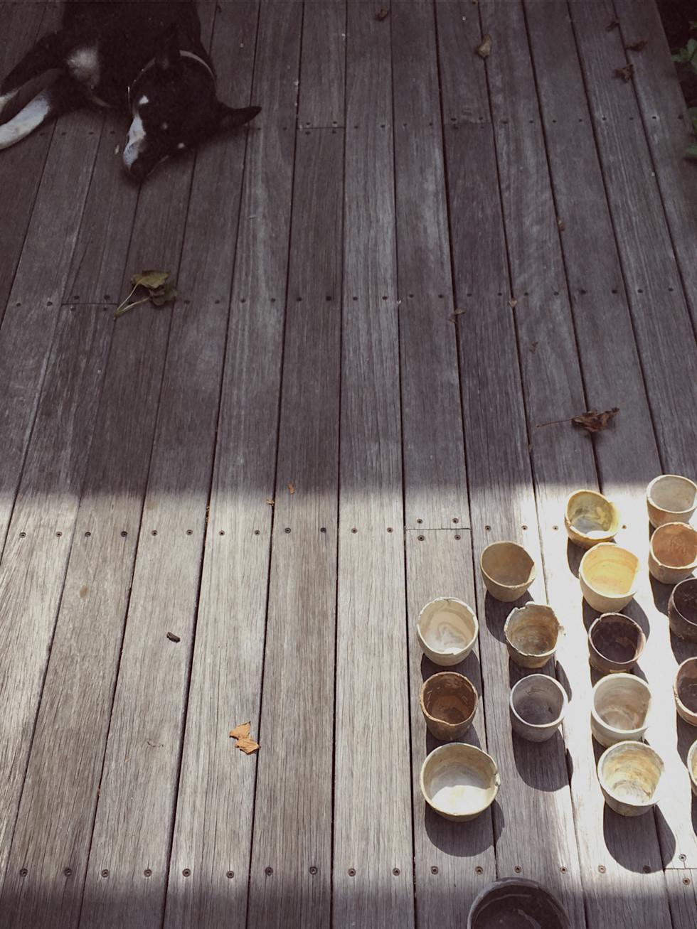 tania rollond_dog deck_2020.jpg