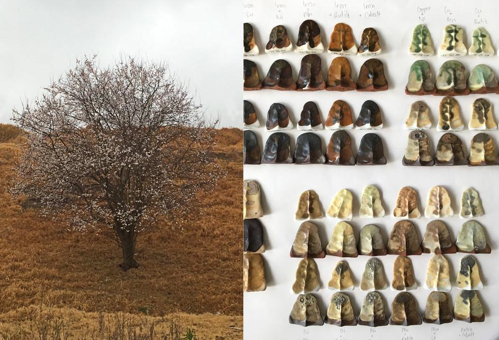 tania rollond_test tile tree_2019.jpg