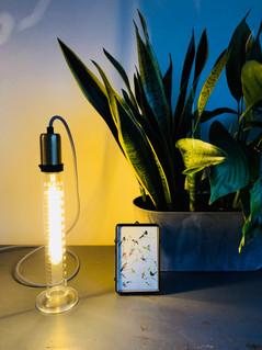Labglas Lamp