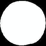 Circle-2-W.png
