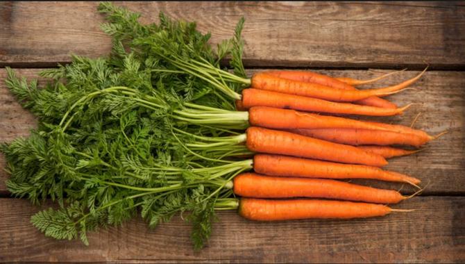 Carrots...dangle more, eat more!