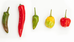 Enjoy hot n spicy?  Then check out the 2019 World's Hottest Pepper list!
