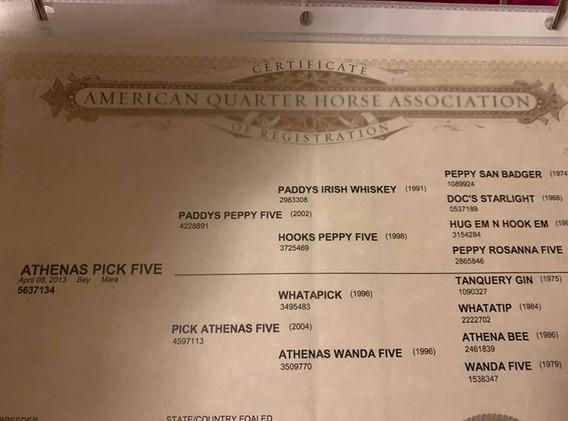 Athenas Pick Five