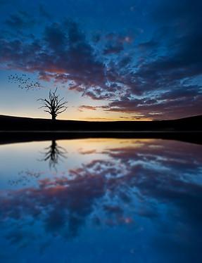 201221Apr_865 mirror.jpg