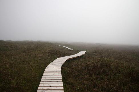 Matin brumeux sur Miquelon.