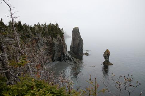 Sur la côte de Terre-Neuve