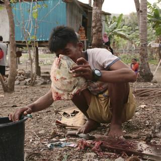 Rais, le beau-fils, rentre de la pêche avec Adrien et Ardian. Ils viennent de capturer un bankolo de 5 kilos ! Comme il ne coûte pas assez cher pour être vendu sur le marché de Seraya ni de Labuan Bajo, il sera mangé par l'ensemble de la famille ce soir. Nous suivons alors toutes les étapes de la préparation du poisson : le rincer, le couper, l'évider, le re-rincer, préparer le feu avec des coques de noix de coco, et le placer sur le feu dans une feuille de bananier.