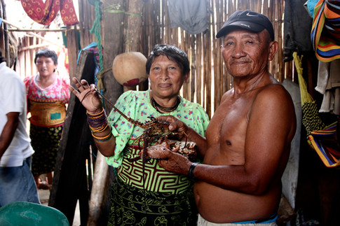 """Ce midi est un jour de fête. Nous sommes invités chez ces personnes qui en plus de nous donner à manger, nous offrent un crabe et une langouste en cadeau.  Ils rient en nous voyant manger le repas traditionnel (soupe de bananes et poisson) comme eux avec les mains, en s'esclamant : """"Yergulegue"""" (""""c'est délicieux"""" en Kuna)"""
