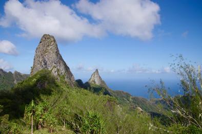 Petite pause au sommet de la randonnée de Poumaka, le plus grand pic de l'île. Accompagnés de Motu, Temoana et Hitapu, nous mangeons plusieurs énormes pamplemousses trouvés en chemin et profitons de la vue, sur deux autres des nombreux pics de Ua'Pou.