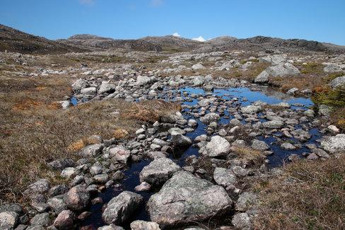 Sur le plateau central de l'île de Saint-Pierre : de la roche, des lacs, et des tourbières.