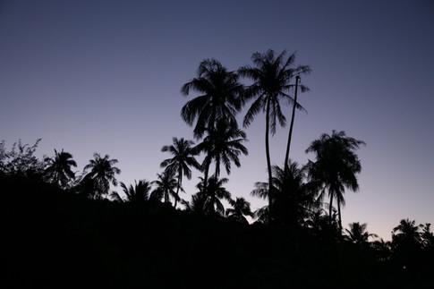La nuit tombe à Vaitahu. Depuis notre tente, nous observons ce joli spectacle d'ombres.
