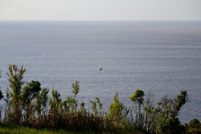 De nombreux voiliers font étape à Flores lors de leur retour des Antilles.