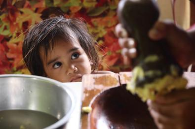 """Ce matin là, Sandrine prépare le ka'aku sous les yeux attentifs de Mahaka.  Le ka'aku est un plat traditionnel marquisien. Il faut tout d'abord récupérer le fruit de l'arbre à pain (le mei) une fois mûr dans l'arbre du jardin. Puis, il faut le faire cuire au feu. Une fois cuit, on le pèle puis on écrase cette pate jaune encore molle et chaude à l'aide d'un pilon et d'un plat en bois appelé """"umete"""".  Le tout sera ensuite mélangé avec du lait de coco maison.  La coco est râpée et essorée dans un linge pour en extraire le lait. C'est délicieux, et très nourrissant !  Les habitants continuent à préparer ce plat traditionnel."""