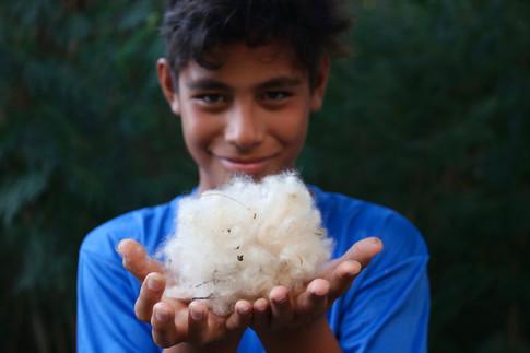 Hitapu vient de ramasser du coton.  Les habitants s'en servent pour réaliser des petits coussins.