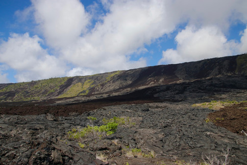 Au coeur du Parc National des Volcans d'Hawaii, les laves durcies des années 73, 74, 79, 86 (et bien d'autres encore) recouvrent les pentes douces du Mauna Loa jusqu'à l'océan.   Ces champs de lave à perte de vue donnent une idée de la forte activité volcanique du lieu.   Et partout, la végétation reprend ses droits.