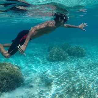 Dula part vers le tombant pour procéder au bouturage des coraux.