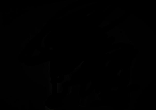 Довіра: надання послуг в таких містах як Харків, Дніпро, Одеса, Полтава, Запоріжжя, Львів.