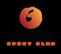 лого феникс 1.png