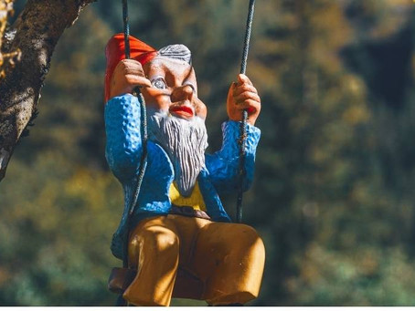 Everything you need to know about gnomes.