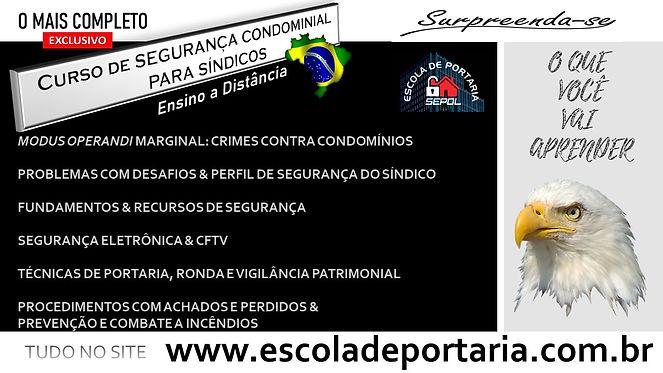 SEGSIND_CONTEUDO_EAD.jpg