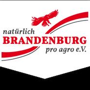 Kai Rückewold, pro agro