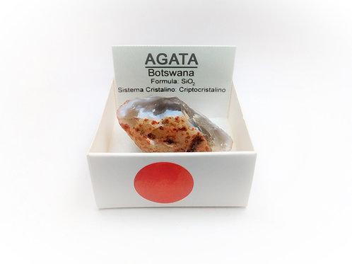 4X4 Agata Botswana