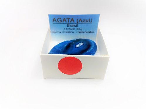 4X4 Agata Azul Brasil