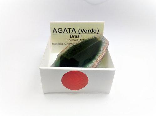 4X4 Agata Verde Brasil