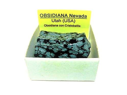 4x4 Obsidiana Nevada de Estados Unidos