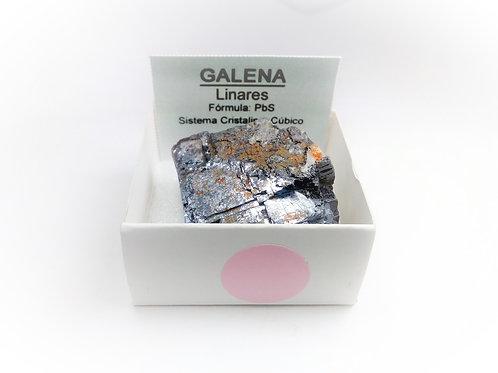 4X4 Galena España