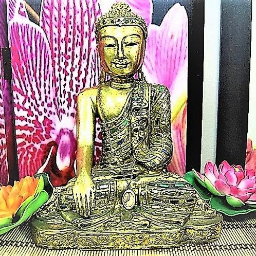 Buda Meditación