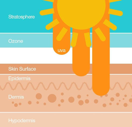 new sun science.jpg