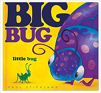Big Bug - cover.jpg