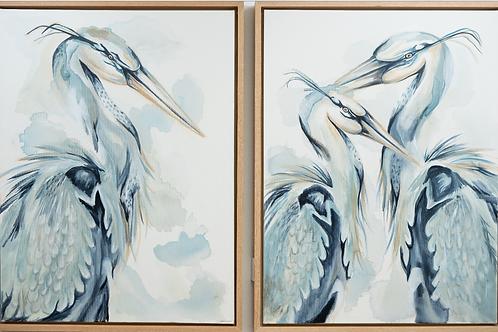 Duo Blue Water Bird