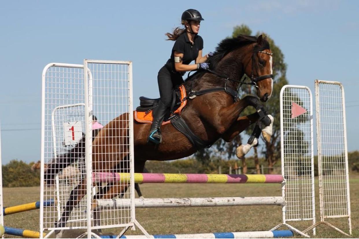 Horse Wear Elegant Horse Wear Australia