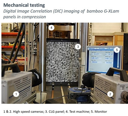 Mechanical testing of bamboo G-XLam panels in compression-DIC.jpg