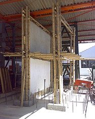 Bamboo frames & anchors UNAL g.jpg