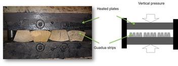 Densification bamboo Guadua.jpg