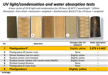 UV light and water absortion tests of bamboo Plastiguadua beams.jpg