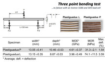 Three point bending test of bamboo Plastiguadua beams.jpg