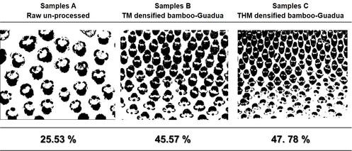 Densified bamboo Guadua SEM samples a.jpg