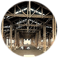 Design & construction of commercial structures with Guadua bamboo