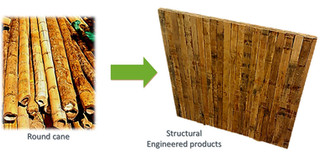 G-XLam-Bamboo Guadua panels-manufacturing process b.jpg
