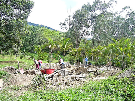 Bamboo structure construction process 1